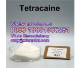 Tetracaine,136-47-0,136470,tetracaine supplier tetracaine powder,Whatsapp:0086-19831955281