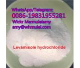 Levamisole powder 99% purity,levamisole powder,levamisole hcl supplier,Whatsapp:0086-19831955281