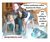 Who can be successful in DXN mushroom coffee business?