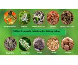 Get Best Ayurvedic Medicine For Kidney Failure In Delhi