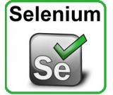 Selenium Training in Noida