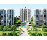 supertech amazonia 3 BHK Apartments in Noida Sec 150 Call 7702-770-770