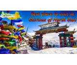 Andaman tour packages - Christmas Tree Hospitality.