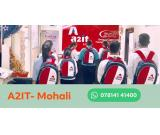 Best Industrial Training Company in Mohali & Chandigarh | A2IT