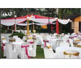 Best party venues in Goa