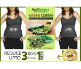 Green Coffee Bean Capsules Dosage | NutriGreens