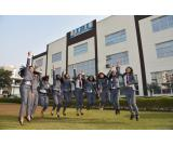 I Business Institute :one of the best B school offering PG courses in Delhi NCR.