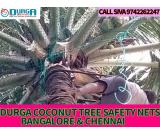 Durga Coconut tree safety nets in bangalore