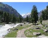 05-DAYS & 04-NIGHTS GILGIT & NALTAR HONEYMOON & FAMILY TOUR