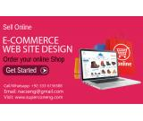 Professional eCommerce Website Design Service
