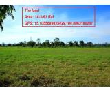 Land for Sale in Bangkok