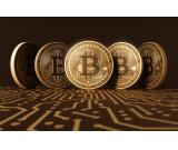 start making profit with binary option trading and bitcoin investment