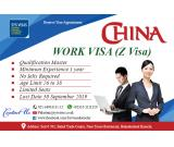 China Work Visa (Z Visa)