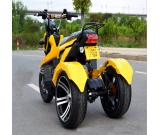 citycoco electric three wheel scooter 60V 12A
